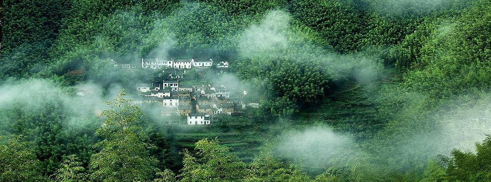 黄山市-黟县-宏村镇-木坑竹海风景区 3a