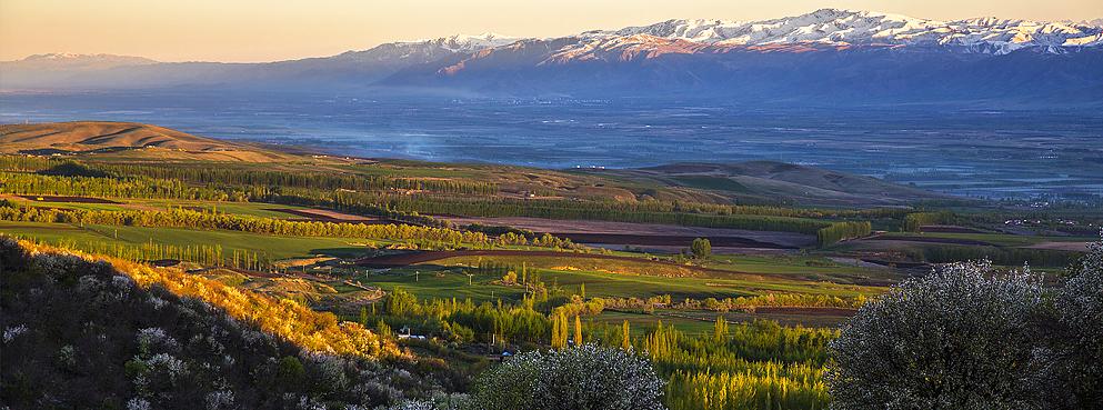 巴音郭楞州-和静县-巩乃斯风景区/国家森林公园