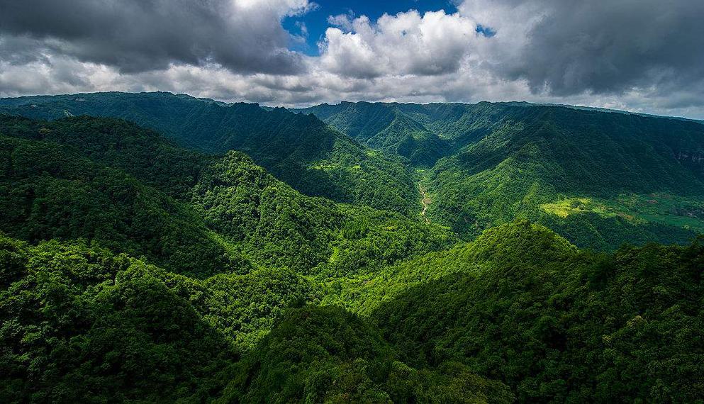 重庆市-石柱县-黄水镇-黄水国家森林公园|大风堡风景区|4a