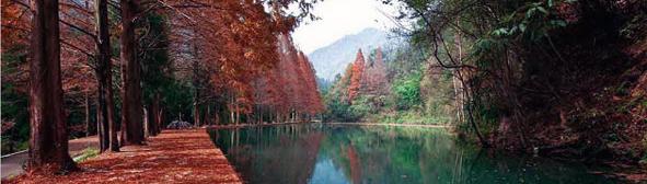 瓮安县朱家山国家森林公园